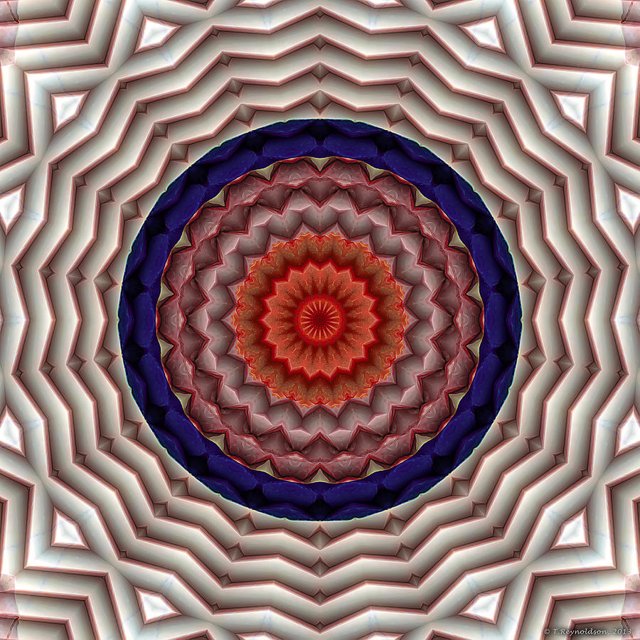 Mandala 10 Digital Art