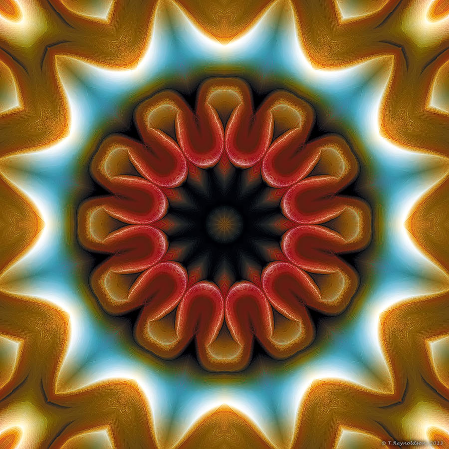 Mandala 100 Digital Art