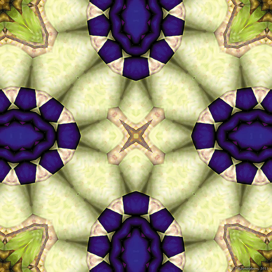 Mandala 115 Digital Art