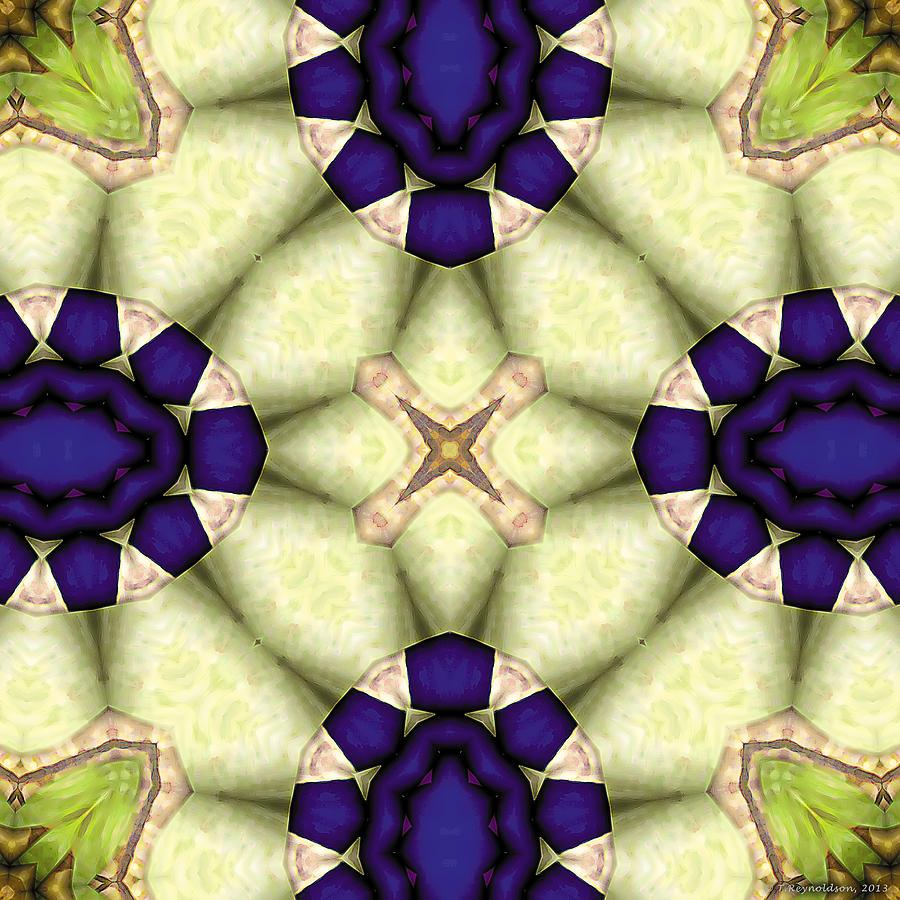 Healing Digital Art - Mandala 115 by Terry Reynoldson