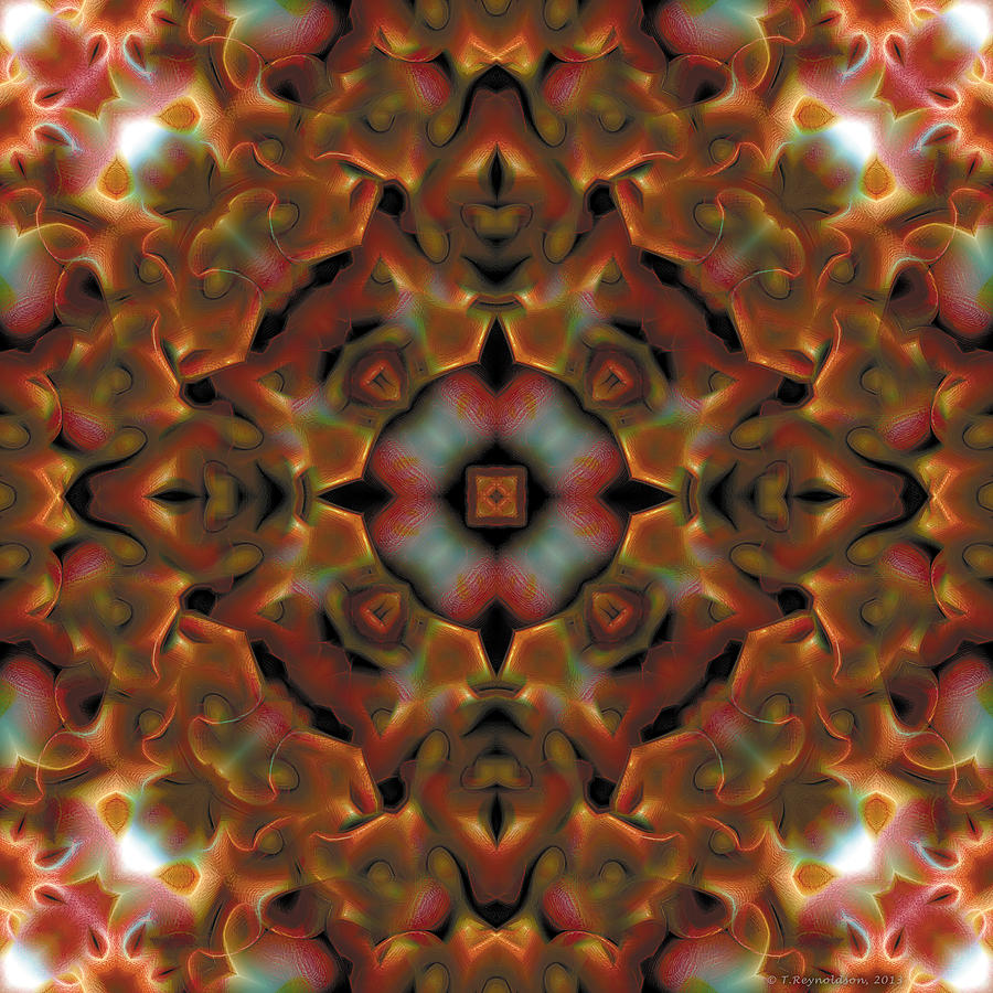 Mandala 119 Digital Art