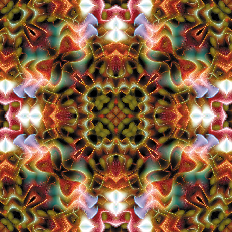 Mandala 120 Digital Art
