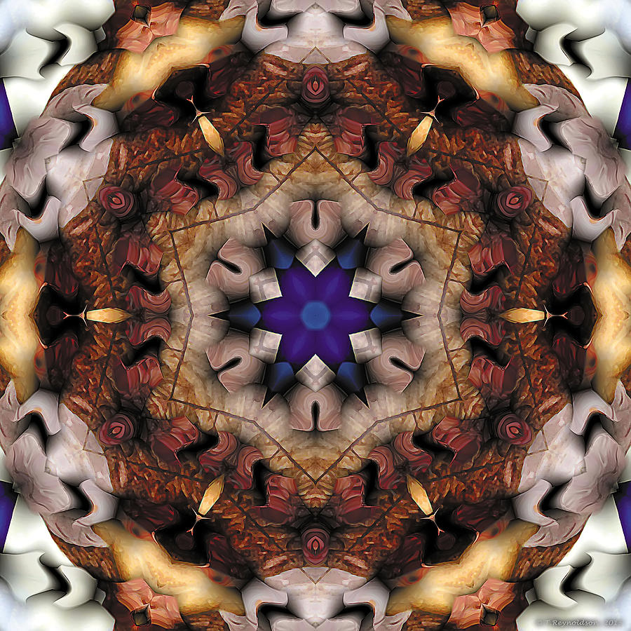 Mandala 16 Digital Art
