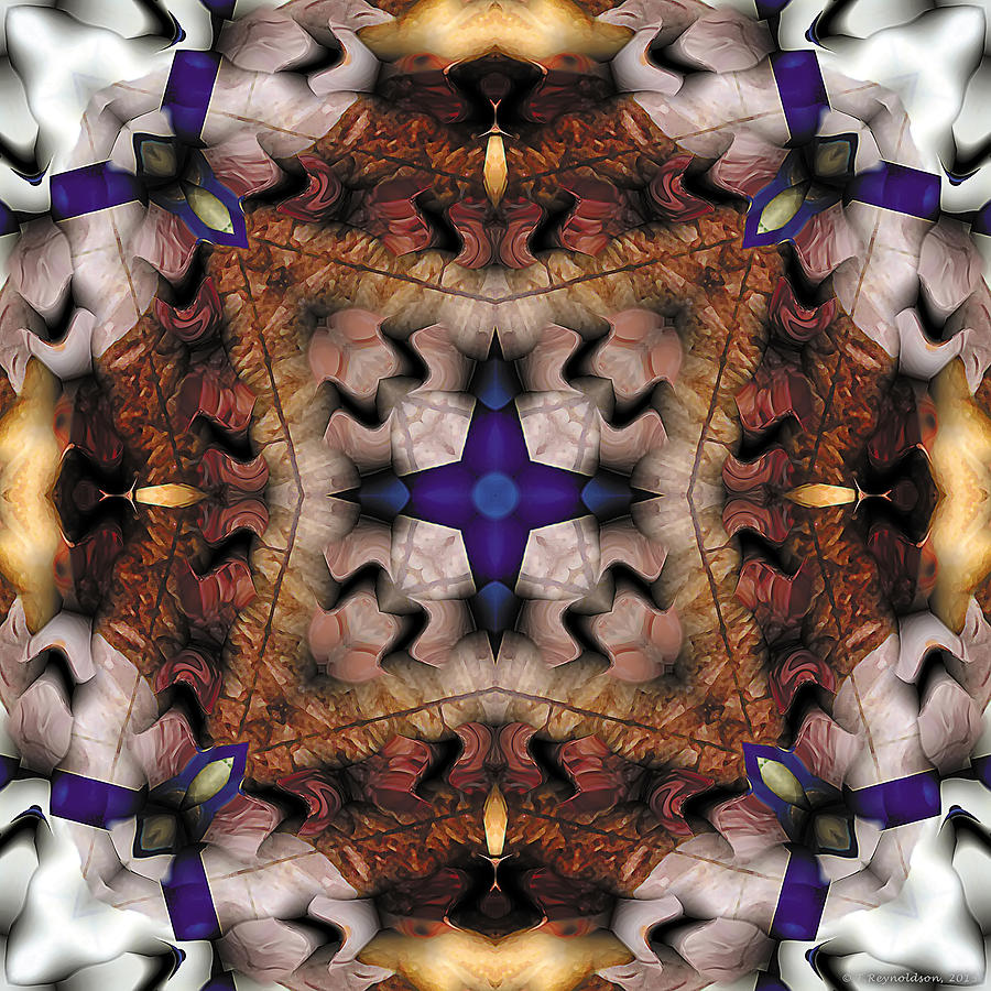 Tibetan Art Digital Art - Mandala 17 by Terry Reynoldson