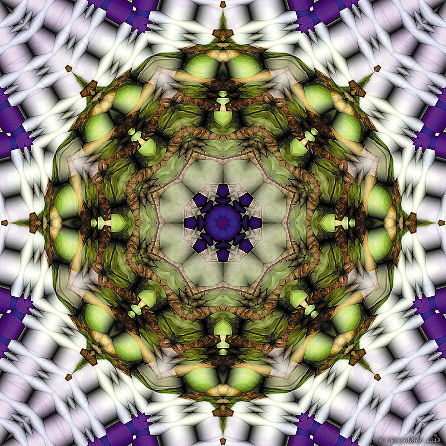 Mandala 21 Digital Art