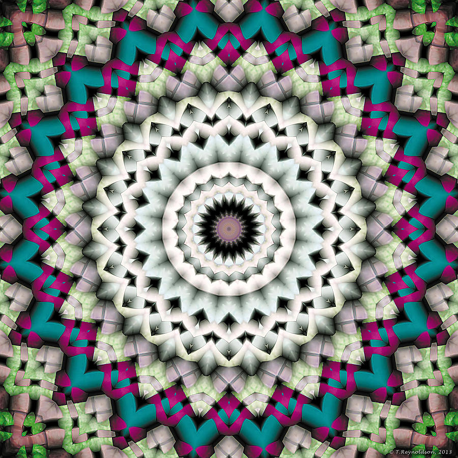 Mandala 36 Digital Art