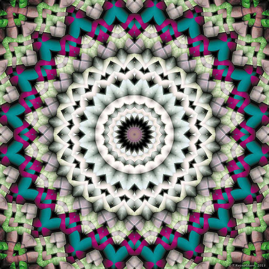 Healing Digital Art - Mandala 36 by Terry Reynoldson