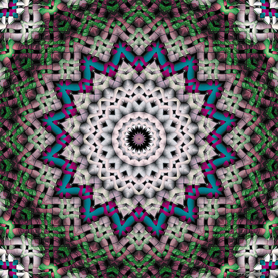Mandala 37 Digital Art