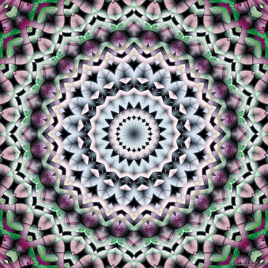 Psychedelic Art Digital Art - Mandala 40 by Terry Reynoldson