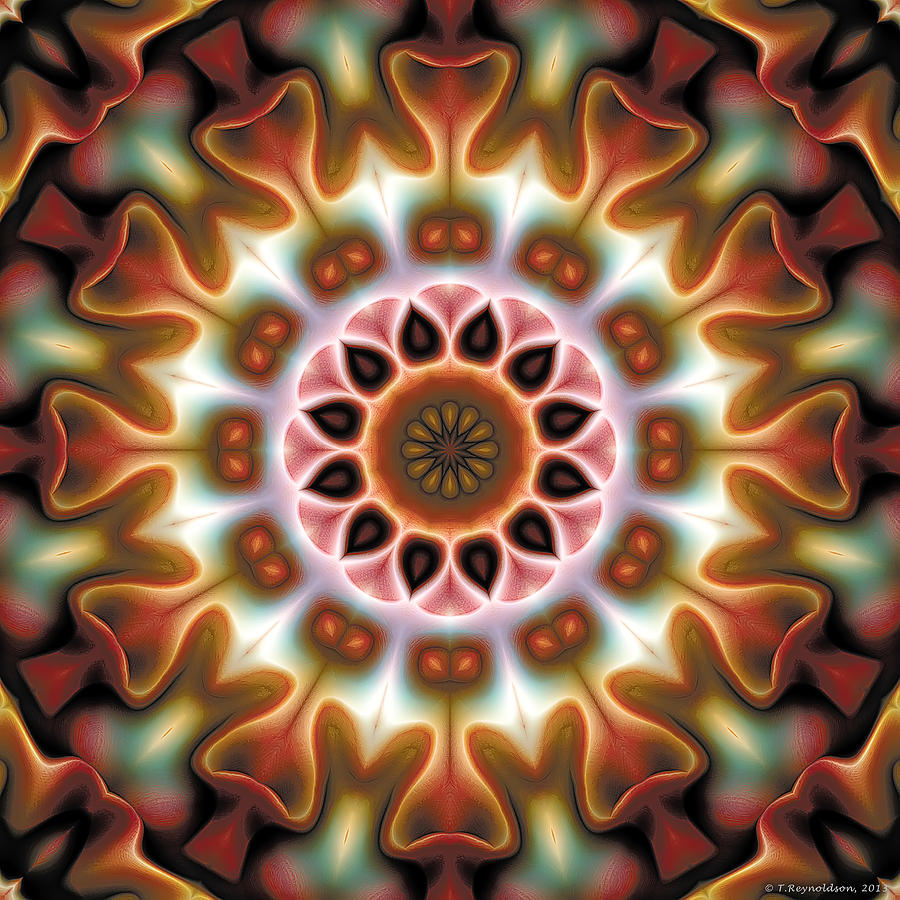 Mandala 67 Digital Art