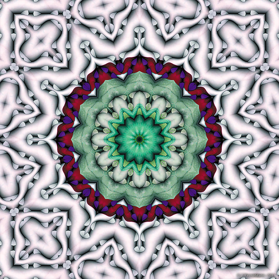 Mandala 8 Digital Art