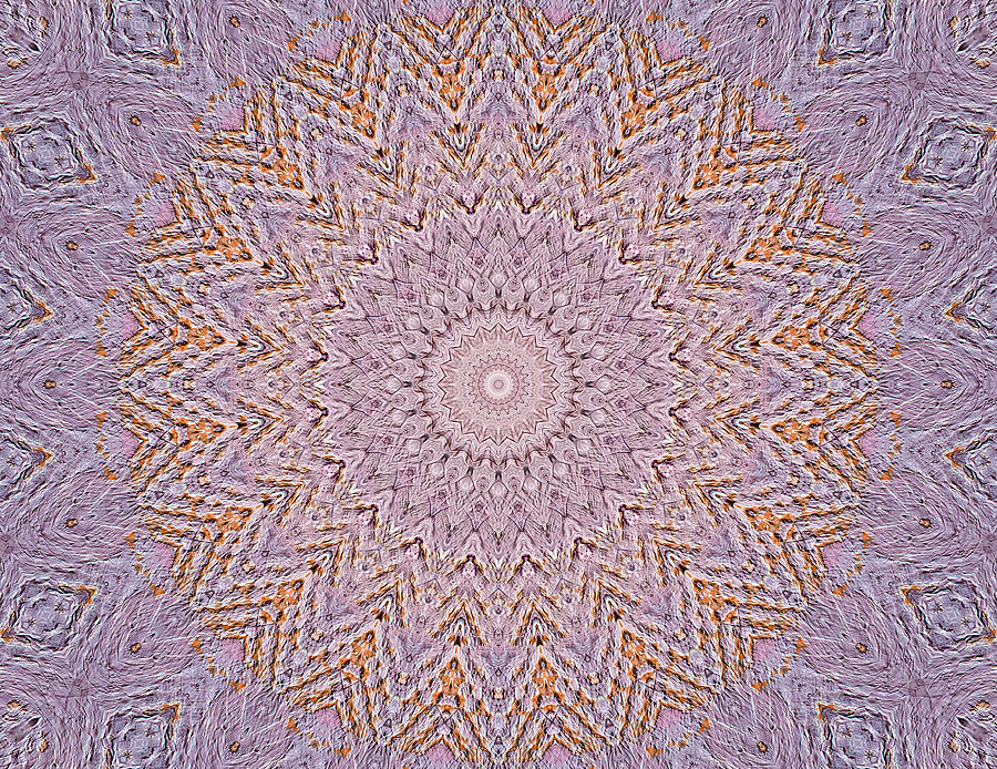 Mandala Five Painting  - Mandala Five Fine Art Print