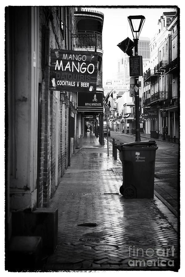 Mango Mango Photograph