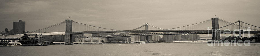 Manhattan And Brooklyn Bridges Photograph  - Manhattan And Brooklyn Bridges Fine Art Print