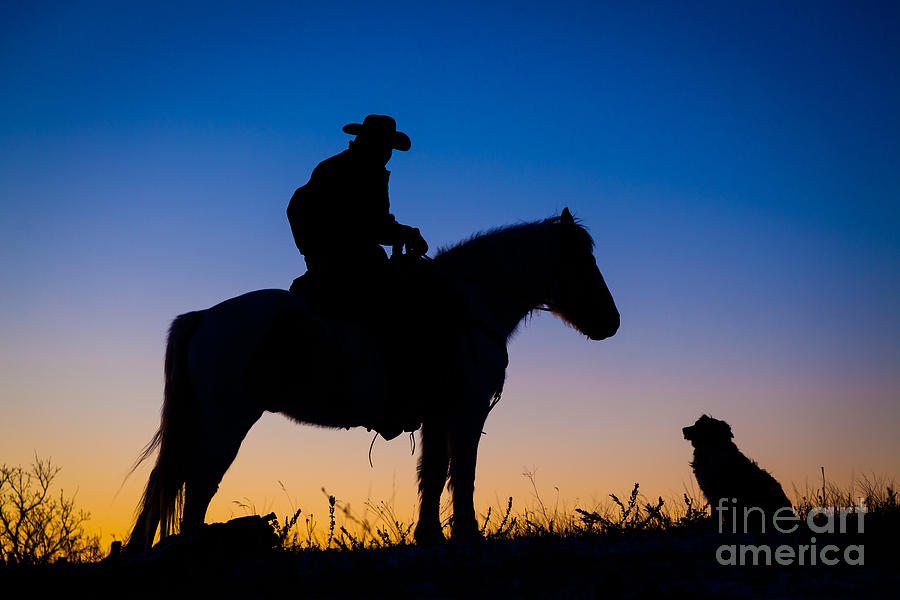 Mans Best Friend Photograph  - Mans Best Friend Fine Art Print