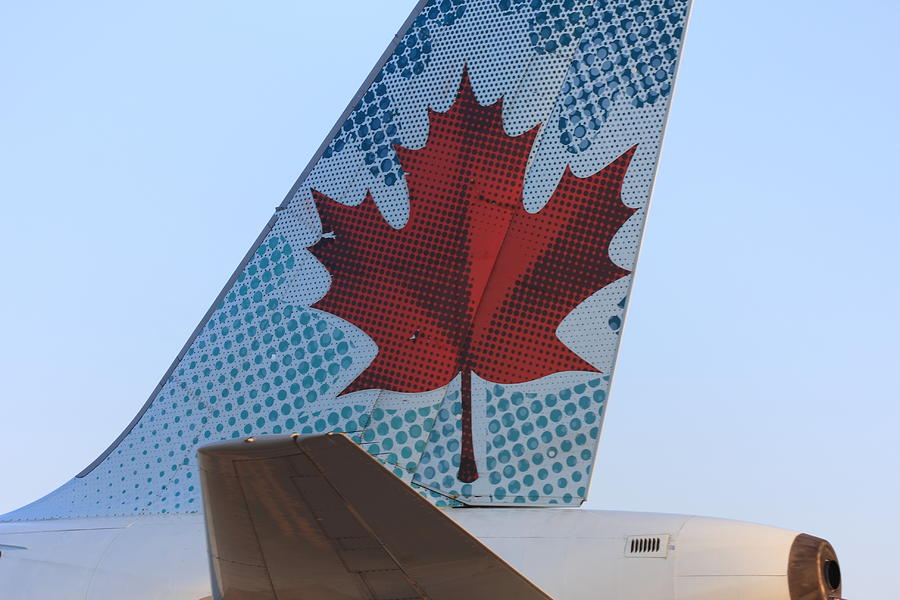 319 Photograph - Maple Leaf Logo On Air Canada Airbus 319 by Andrei Filippov