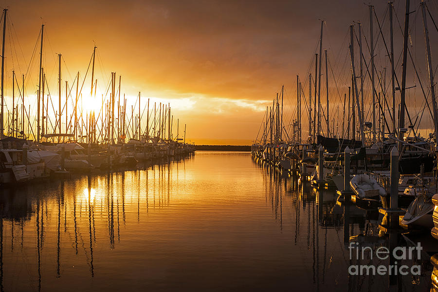 Marina Photograph - Marina Golden Sunset by Mike Reid