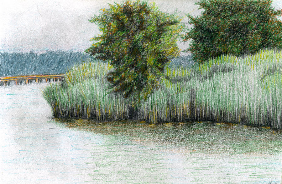 Mariner Point Park Drawing  - Mariner Point Park Fine Art Print