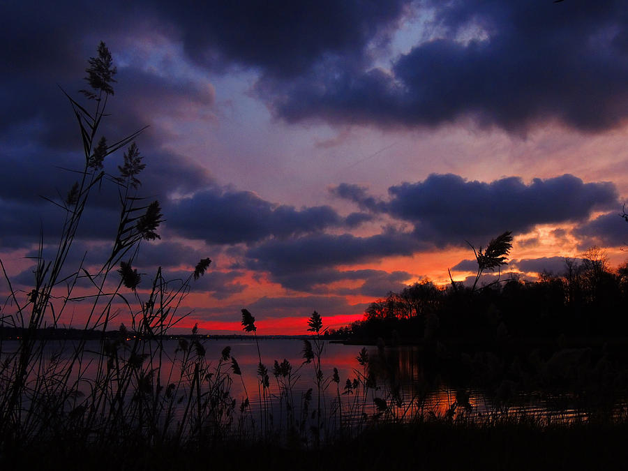 Marsh Sunset Photograph