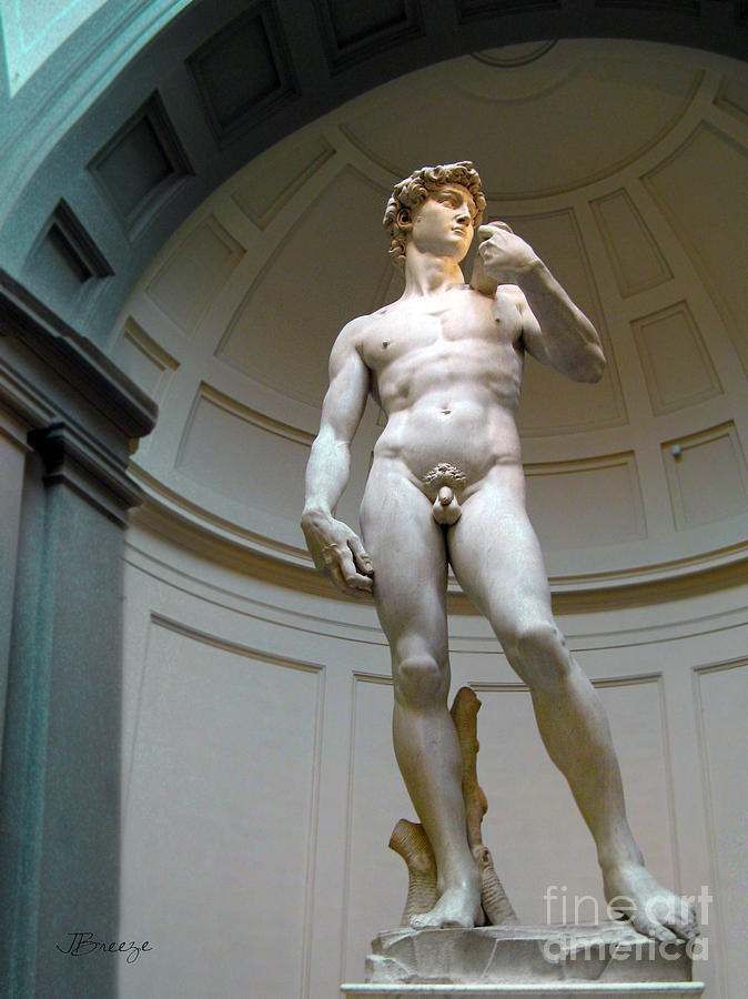 Masterpiece David.florence Photograph