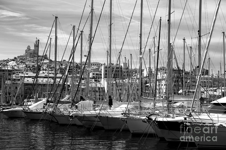 Masts In The Harbor Photograph