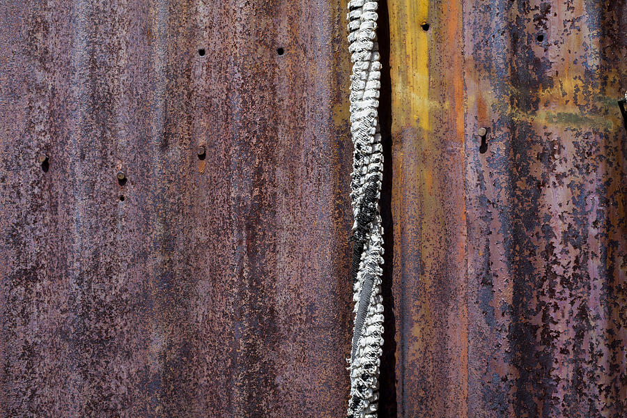 Iron Photograph - Maximum Decay  by Fran Riley