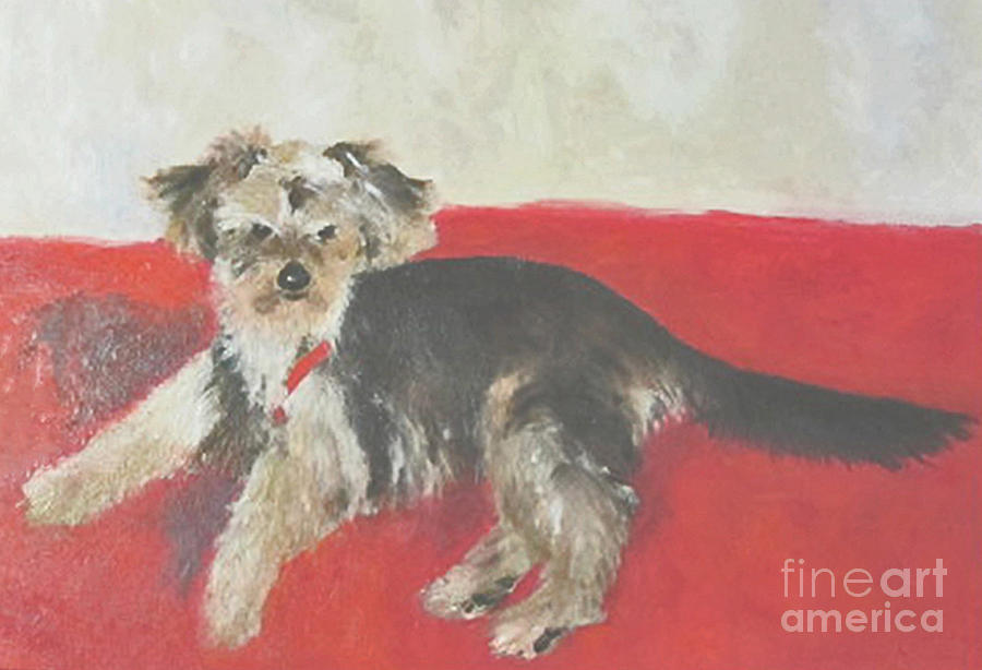 Portrait Of A Yorkie Painting - Maximus by Barbara Anna Knauf