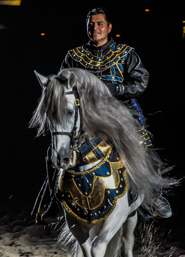Horse Photograph - Medieval Times Knight And Horse by Gene Sherrill