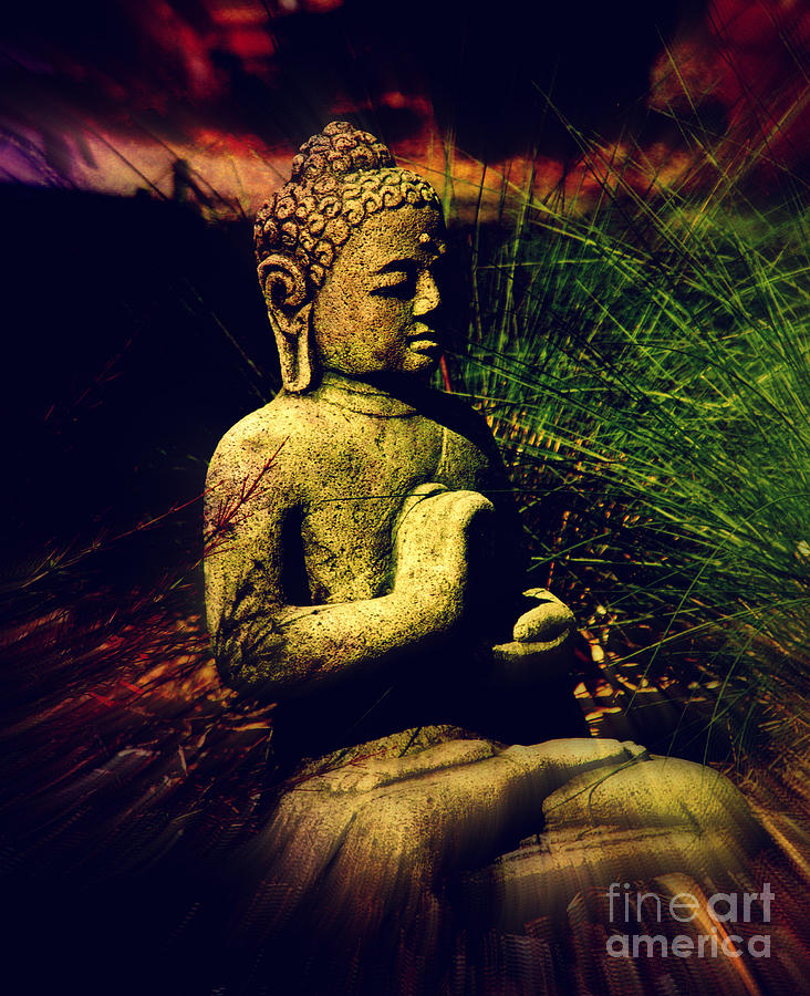 Meditating Buddha Photograph