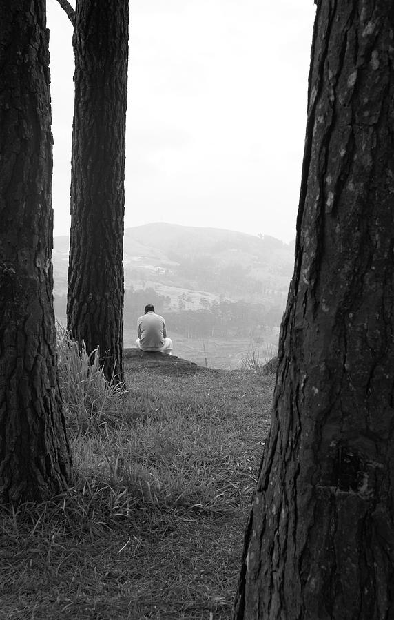 Meditating In The Trees Photograph