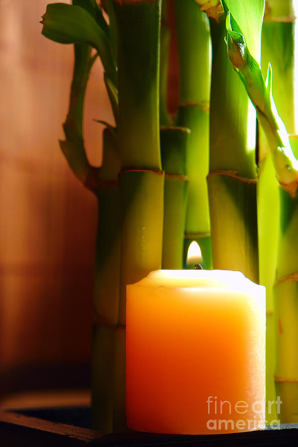 Meditation Candle And Bamboo Photograph