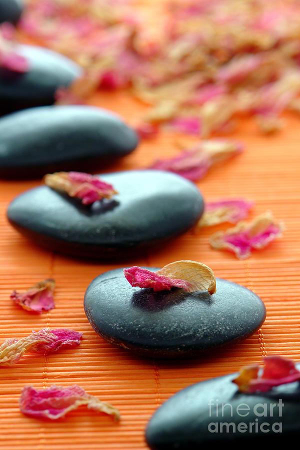 Zen Photograph - Meditation Zen Path by Olivier Le Queinec
