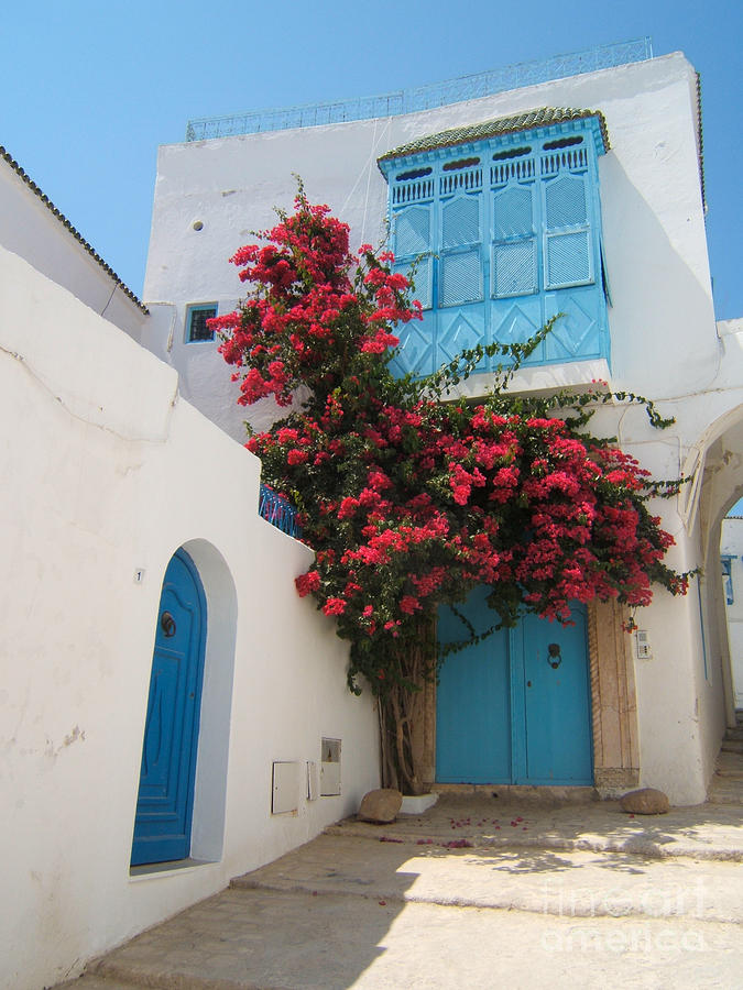 Mediterranean House Photograph