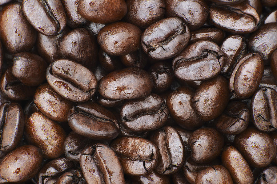 medium dark roast kona coffee beans photograph by philip. Black Bedroom Furniture Sets. Home Design Ideas
