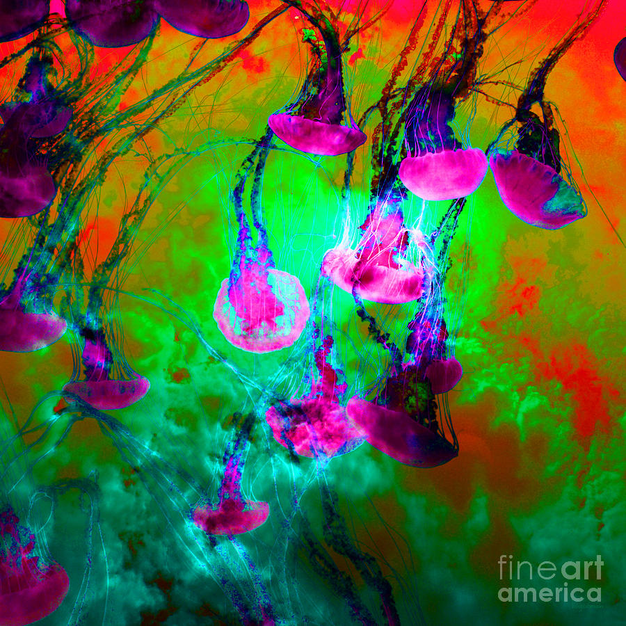 Medusas On Fire 5d24939 Square P128 Photograph  - Medusas On Fire 5d24939 Square P128 Fine Art Print