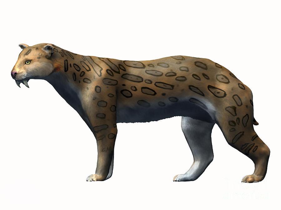 Megantereon Cultridens, Pliocene Digital Art