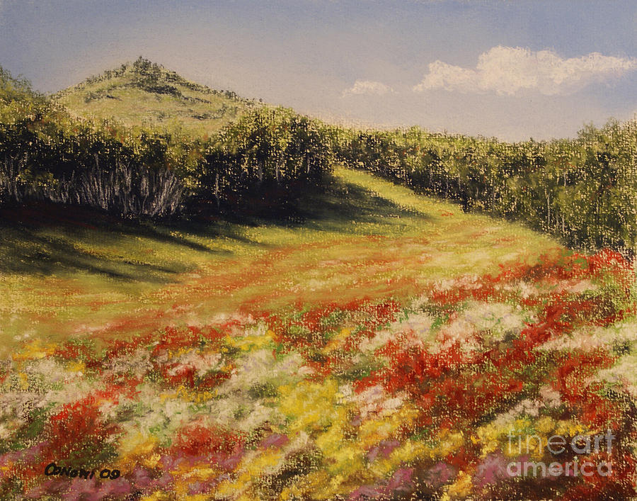Melkow Trail  Painting  - Melkow Trail  Fine Art Print