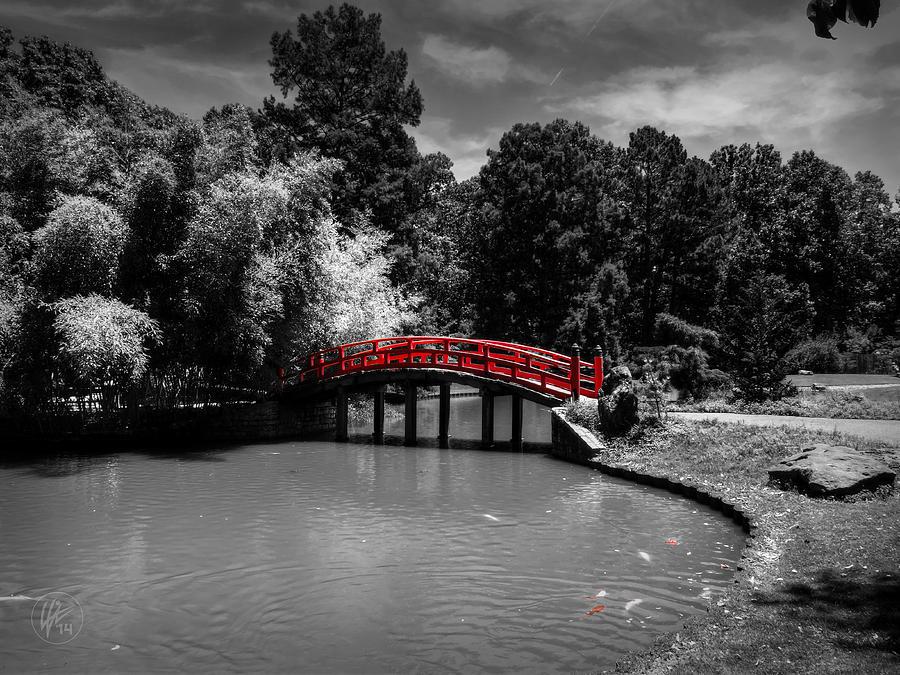 Memphis Botanic Garden 001 Ck Photograph By Lance Vaughn
