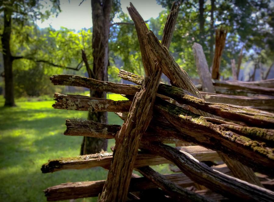 Mending Fences Photograph by Karen Wiles