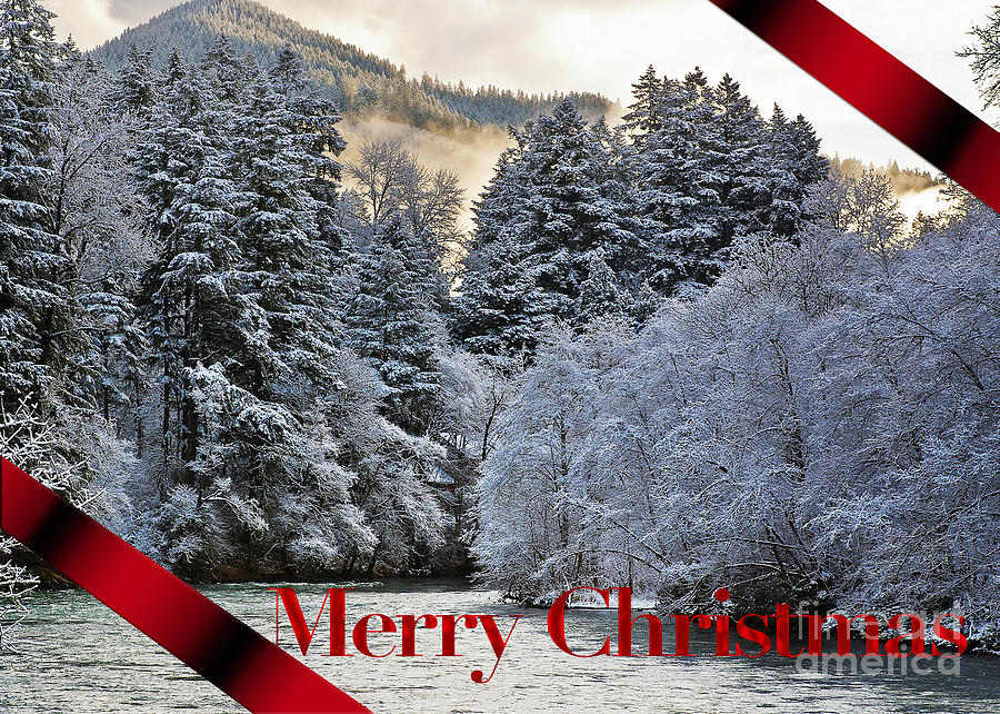 Merry Christmas Card Photograph  - Merry Christmas Card Fine Art Print