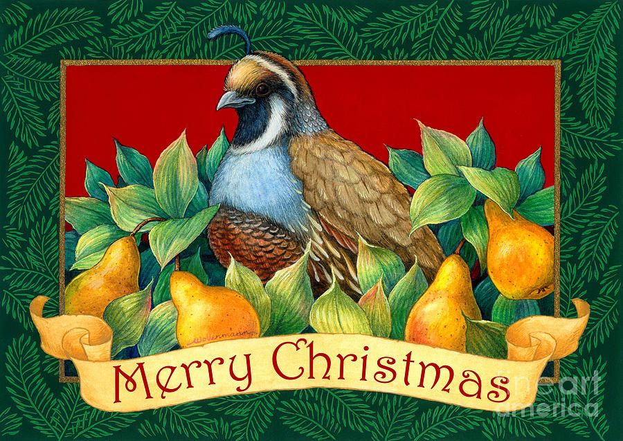 Merry Christmas Partridge Painting  - Merry Christmas Partridge Fine Art Print
