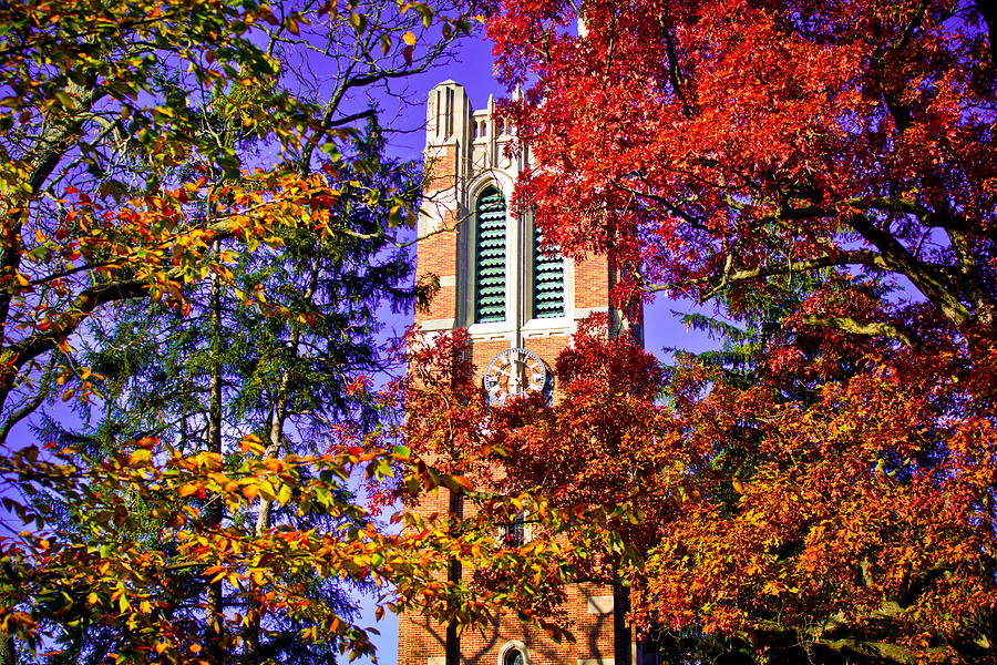 Michigan State University Beaumont Tower Photograph By