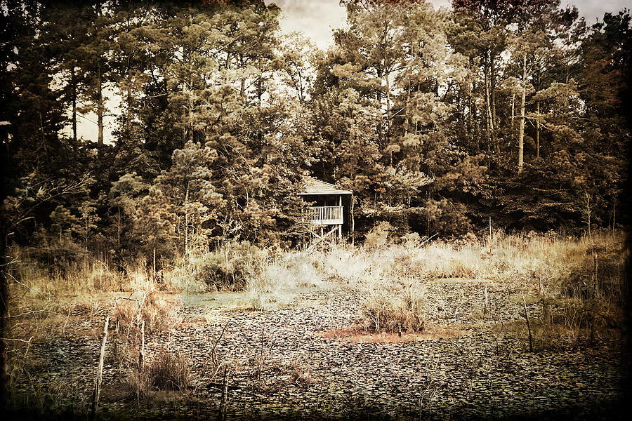 Textured Photographs Photograph - Middle Of Nowhere by Ester  Rogers