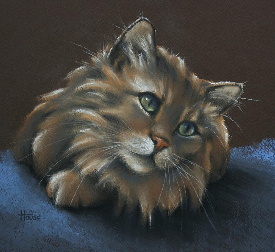 Tabbycat Drawing - Miko by Cynthia House