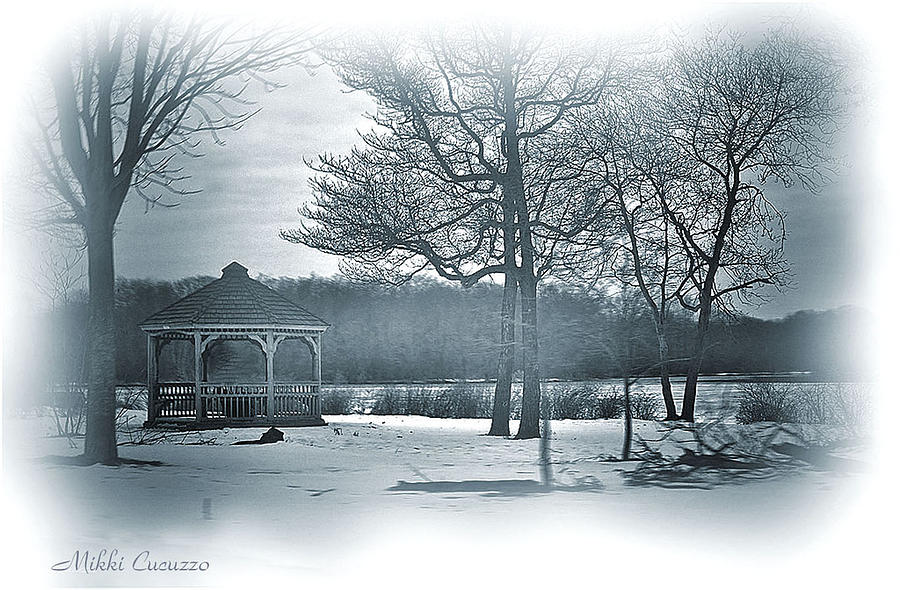Mill Pond In Winter Photograph