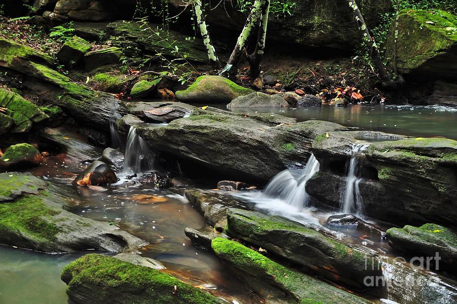 Photography Photograph - Mini Waterfalls by Kaye Menner