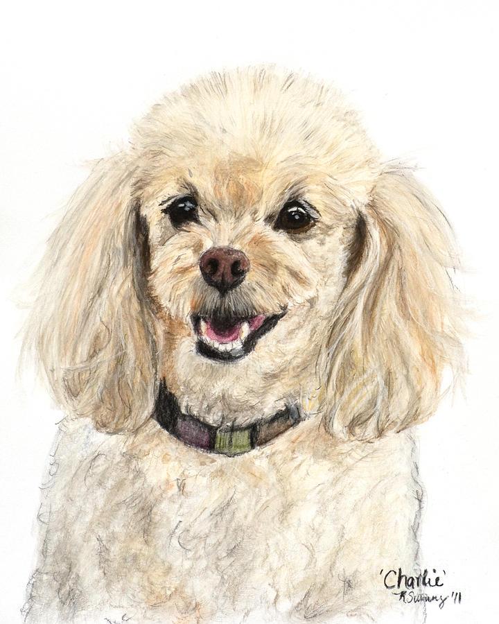 Miniature Poodle Painting Champagne Pastel