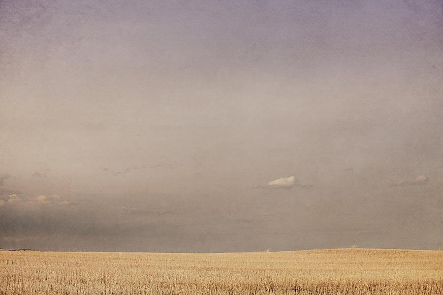 Minimalist landscape of a prairie grain by roberta murray for Minimal art landscape