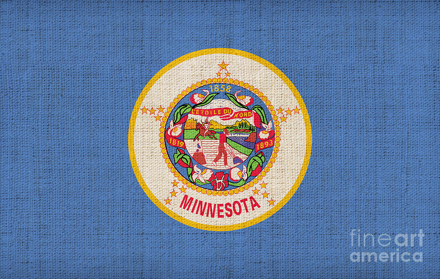 Minnesota State Flag Painting