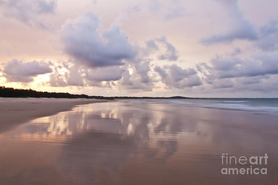Noosa Photograph - Mirror On Main by Nicole Doyle